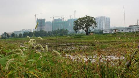 Từ Liêm lên quận, giá đất, môi giới bất động sản, xây dựng, cò đất