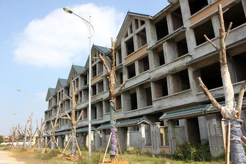 dự án Kim Chung-Di Trạch, dự án hoang, khu đô thị, giá đất nền
