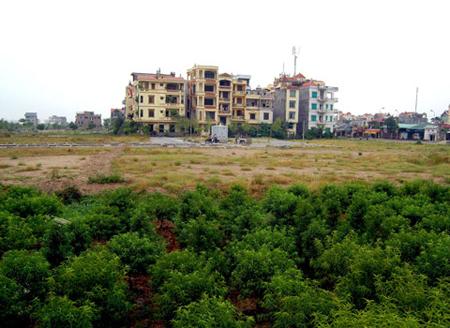 giá đất nền, bất động sản, căn hộ chung cư, nhà thu nhập thấp, đất ngoại thành Hà Nội