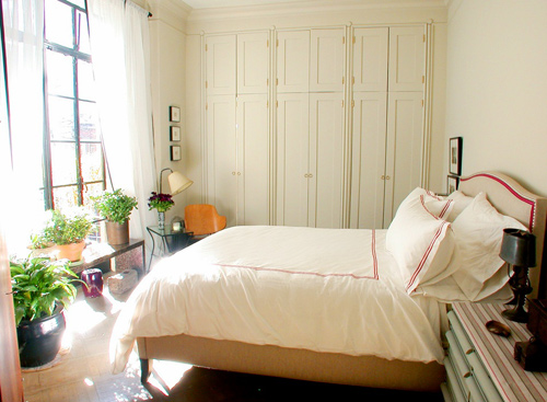 cây xanh, phong thủy, phòng ngủ, gia chủ