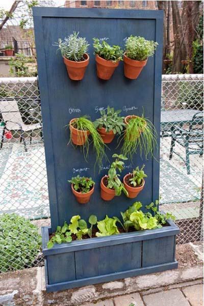 trồng cây trên ban công, khu vườn thảo mộc, cây cảnh, trồng rau sạch