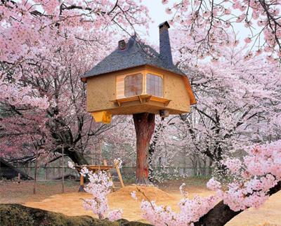 """15 concept nhà trên cây cực kì đẹp khiến bạn """"ngắm không chớp mắt"""""""