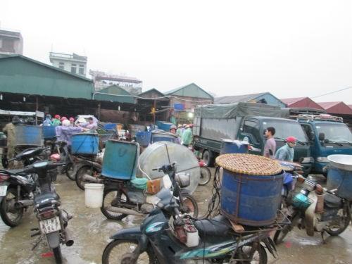 So Thuong Village Fish Market, fish market
