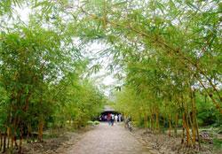 HCM City to open tourism park