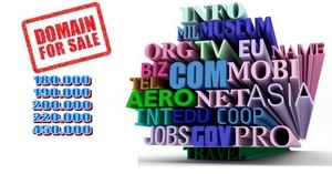 Is it really profitable to speculate on domain names?