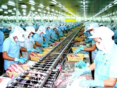 High production costs cause worries to tra fish producers