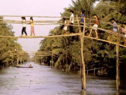 The Mekong Delta's deadly foibles