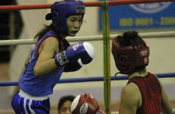 Viet Nam's boxers aim for SEA Games gold