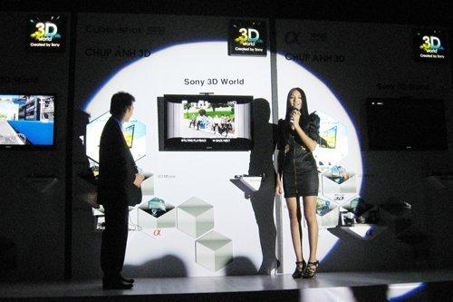Demand high, but 3D video player market quiets