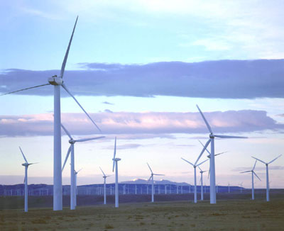 Google increases investment in clean energy