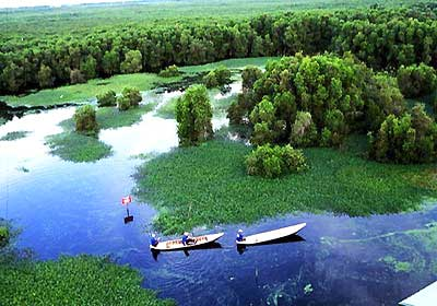 Ca Mau Cape National Park to be recognized as Ramsar site