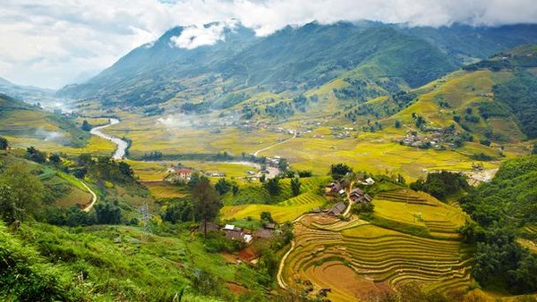 terraced fields Sapa