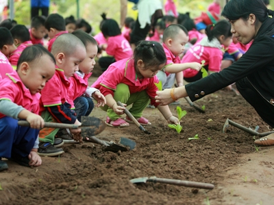 Pre-school education revives, flares up
