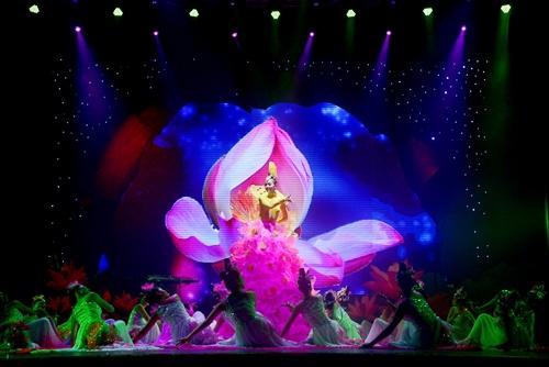linh nga, dance, sen, lotus
