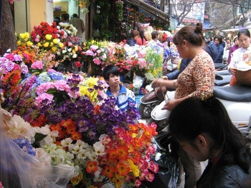 "The most famous ""flower paradises"" in Vietnam"
