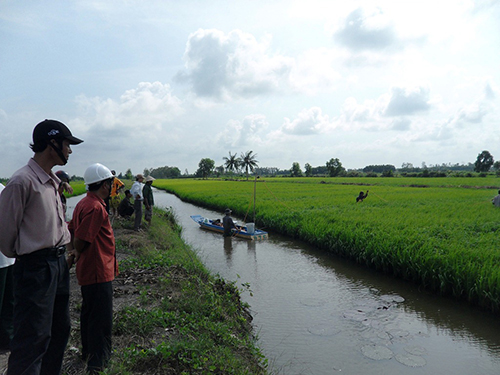 Vietnam, Mekong Delta, climate change, agriculture production