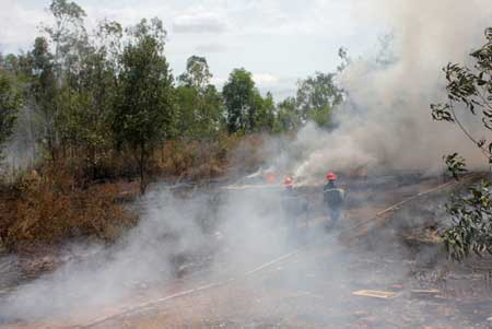 Central Highlands, southern regions, forest rangers, fire fighters