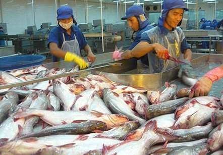 anti dumping case of vietnam catfish in us market The objective of dumping is to increase market share in a  the anti-dumping duty in case of  anti-dumping duty on stainless steel from us,.