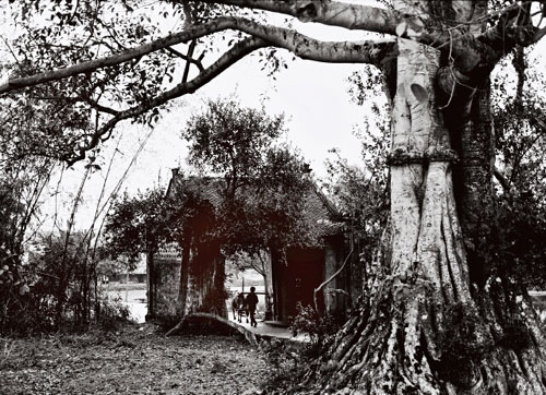 Beautiful black and white photos of Vietnamese villages