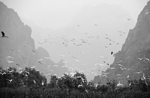 Vietnamese people landscape beauty spot photo black and white photo