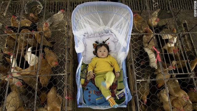 Bird flu puts spotlight on age-old traditions in China