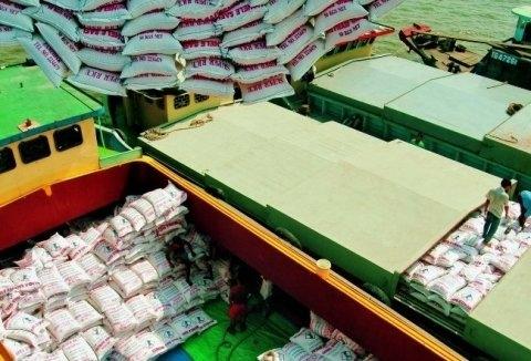 vietnam, rice export, rice production, farmers, rice farmer, profit