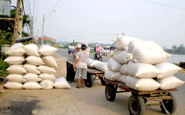 Vietnam, rice export, VFA, policies, Thailand