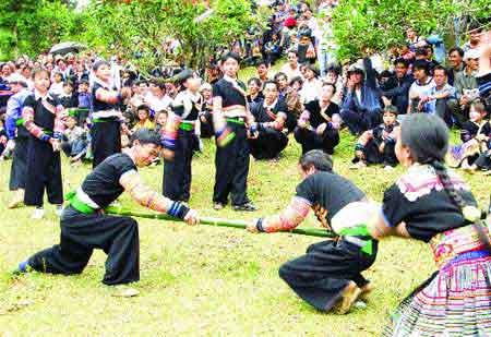 Yen Bai, Suoi Giang Commune, Mong people, tea forest