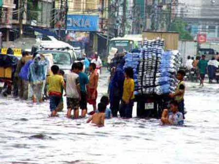 Viet Nam, safeguard firms, natural disasters, floods, storms