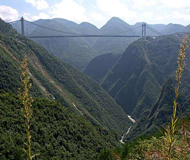 Sidu River Bridge, China.