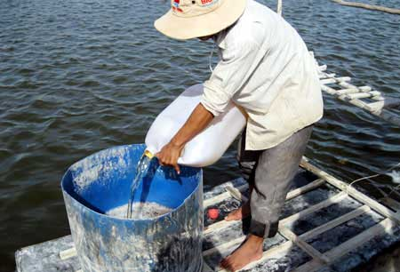 Mekong Delta, nano silver solution, shrimp farming