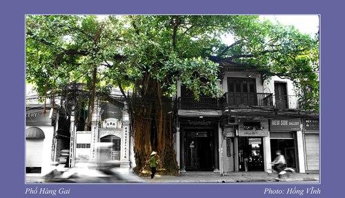 Hang Gai Street by Hong Vinh.