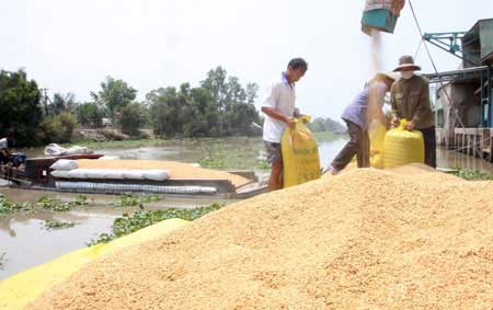 Mekong Delta, sea levels, climate change, WB