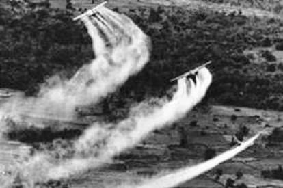 chemical weapons, mass destruction, AO, dioxin, vava, victim, vietnam war