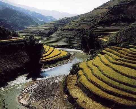 Sapa, Muong Hoa Valley, records, Mai Chau, Muong Thanh