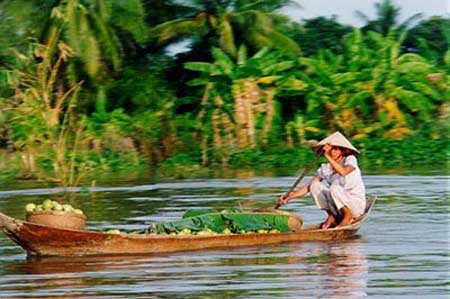 Mekong Delta, farming land, vacant industrial parks, Mekong River, biological, forests