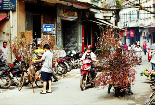 flower bike, mobile flower shop, hanoi, romantic
