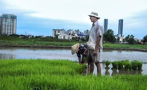 The last farmers in Saigon