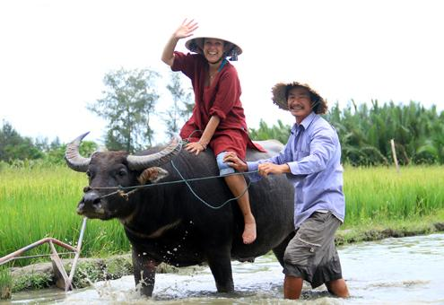 buffalo tour, hoi an, tourists, riding buffalo