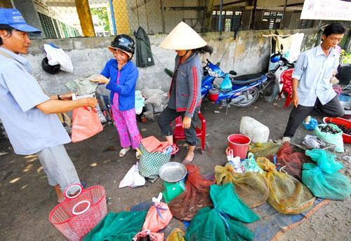 wildlife, mekong delta, flood season, extinction