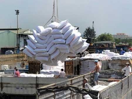 Vietnam, MoIT, rice exporters, global rice market, Vietnamese exporters