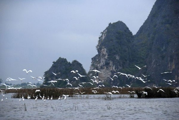 Vietnam's top lagoons