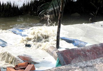 leather firm, pollution, waste water, hcm city, hao duong