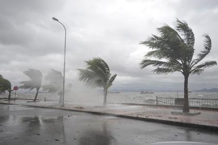 Typhoon Haiyan death toll rises to 13 Haiyan makes landfall, weakens into depression