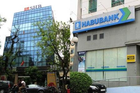 bank restructuring, weak banks, credit institution, foreign banks, sbv