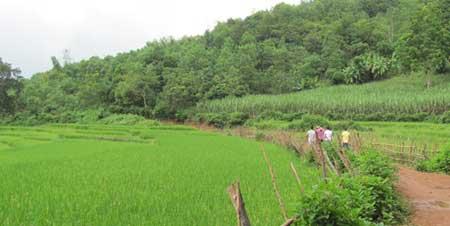 Muong ethnic people turn idyllic remote region into tourist hotspot