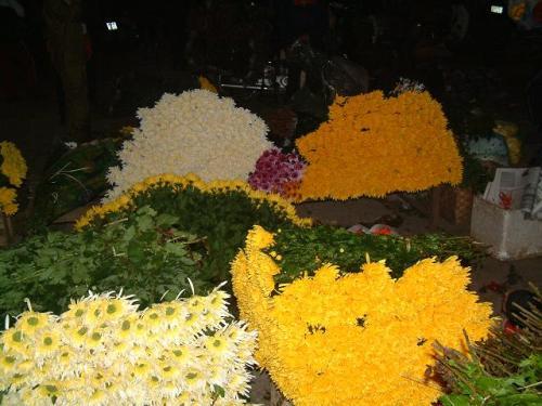night flower market, hanoi, tay tuu, quang ba, me linh