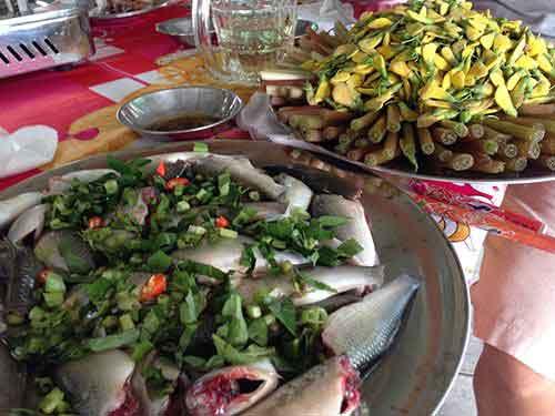 Dong Thap, Dong Sen Thap Muoi, eco tourist site