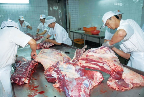 Import meat sold at below production costs in Vietnam