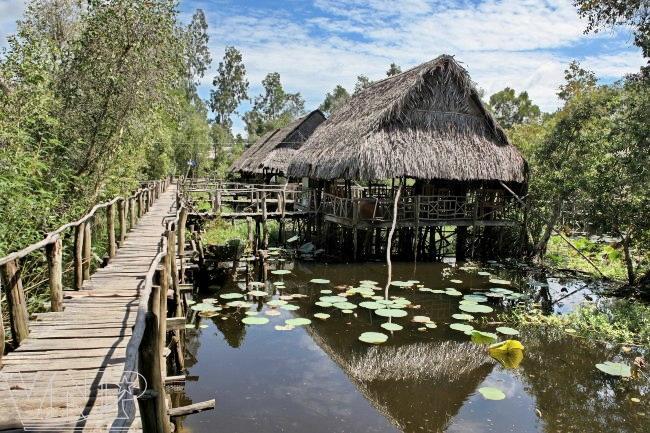 Gao Giong, Dong Thap Muoi, eco-tourism